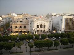 Theatre Municipal - Leandro Neumann Ciuffo pod CC